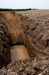 Backhoe pits reveal many things including the potential of a water table and soil stratification. They should be dug in any parcel that is being considered for a future almond planting.